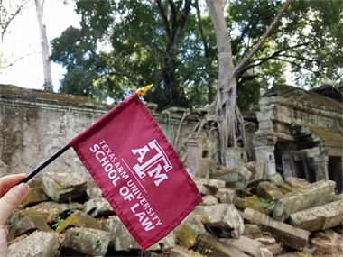 Cambodia- TAMU Law at Ta Prohm