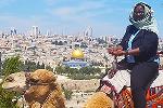 Israel Field Study camel